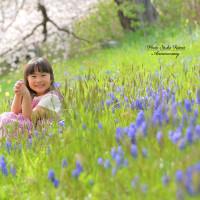 ~桜🌸ロケーションキャンペーン🌸~